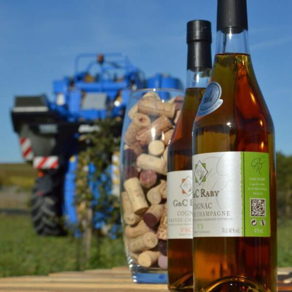 raby cognac viticulture